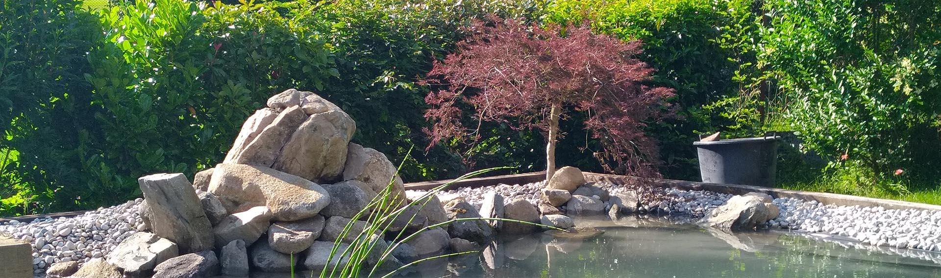 Jardins japonnais